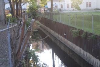 Boneyard Creek